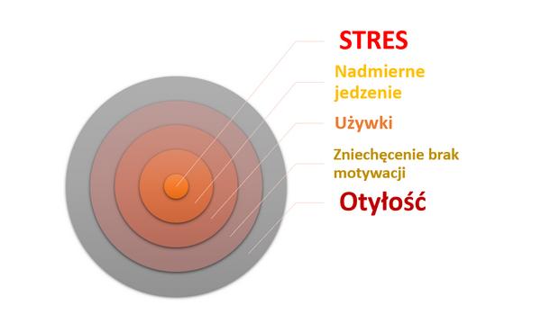 Zależność stresu iotyłości